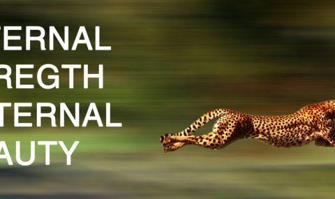 Internal Strength External Beauty